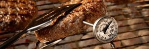 Cooking with Thermometer