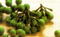 Pea Eggplants (Pea Aubergines)